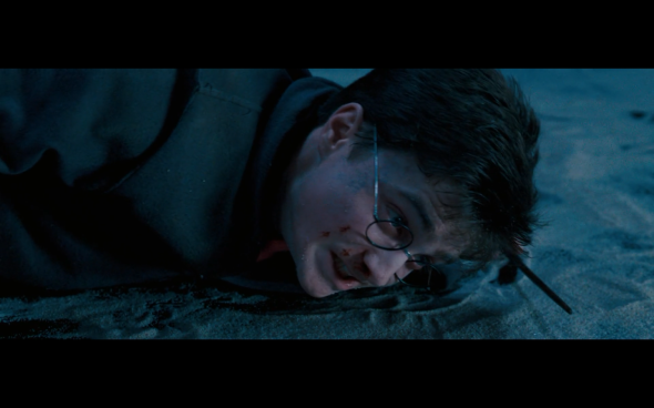 Harry Potter and the Order of the Phoenix - 1773