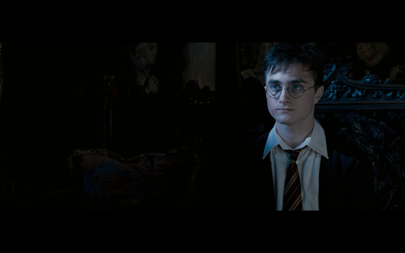 Harry Potter and the Order of the Phoenix - 1832