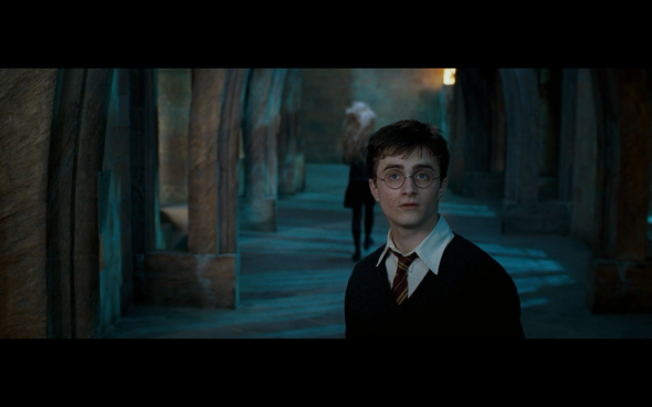 Harry Potter and the Order of the Phoenix - 1851