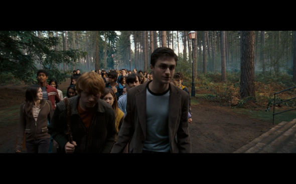 Harry Potter and the Order of the Phoenix - 1860