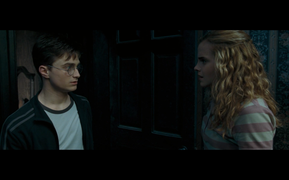 Harry Potter and the Order of the Phoenix - 187