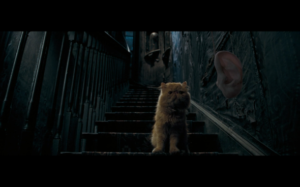 Harry Potter and the Order of the Phoenix - 203