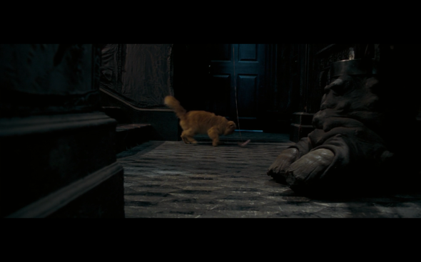 Harry Potter and the Order of the Phoenix - 205