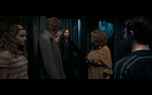 Harry Potter and the Order of the Phoenix - 212
