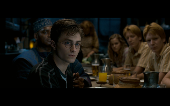 Harry Potter and the Order of the Phoenix - 233