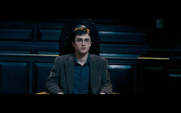 Harry Potter and the Order of the Phoenix - 302