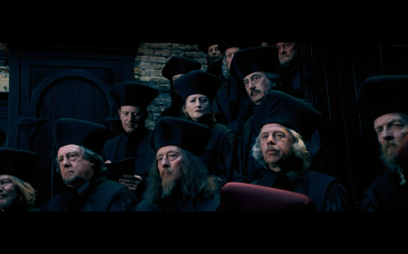Harry Potter and the Order of the Phoenix - 310
