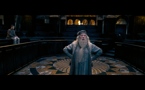 Harry Potter and the Order of the Phoenix - 335