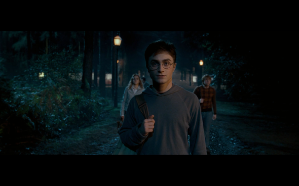 Harry Potter and the Order of the Phoenix - 393