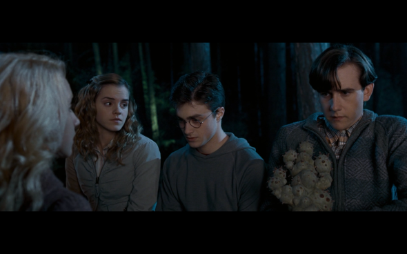 Harry Potter and the Order of the Phoenix - 407