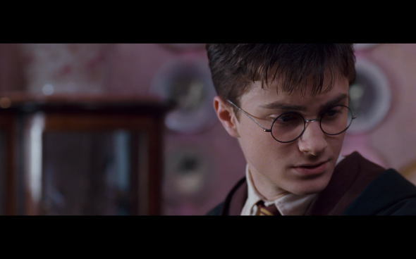 Harry Potter and the Order of the Phoenix - 528