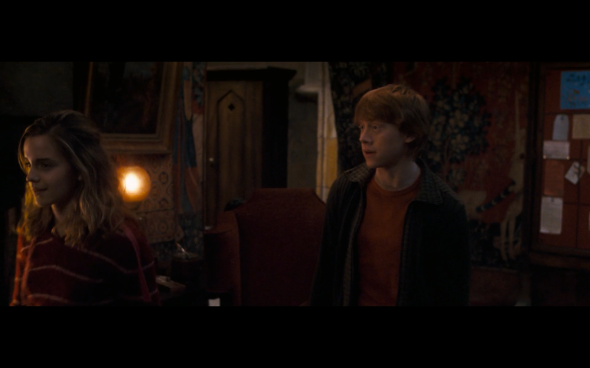 Harry Potter and the Order of the Phoenix - 546
