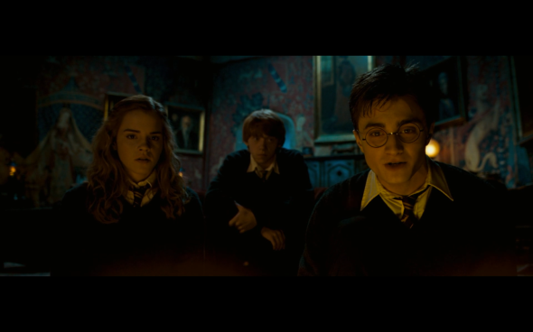 Harry Potter and the Order of the Phoenix - 682