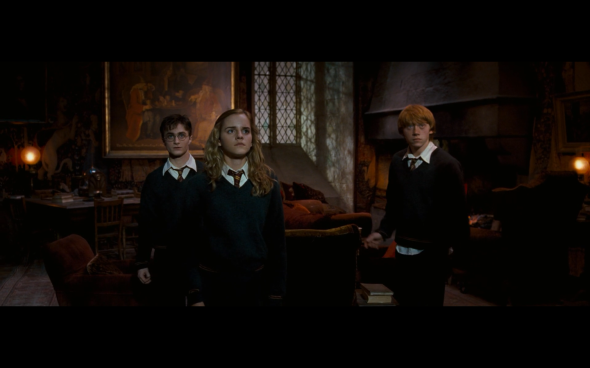 Harry Potter and the Order of the Phoenix - 688