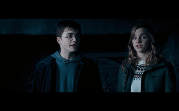 Harry Potter and the Order of the Phoenix - 726