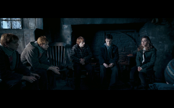 Harry Potter and the Order of the Phoenix - 735