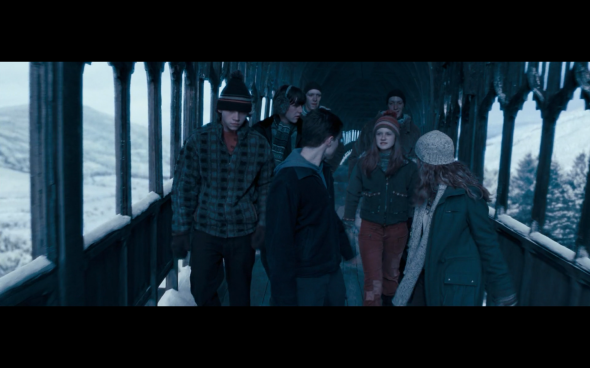 Harry Potter and the Order of the Phoenix - 744