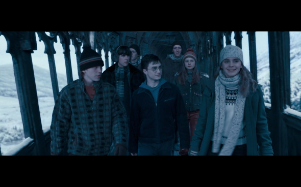 Harry Potter and the Order of the Phoenix - 746