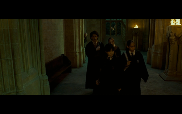 Harry Potter and the Order of the Phoenix - 785