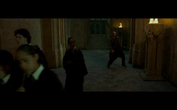 Harry Potter and the Order of the Phoenix - 787