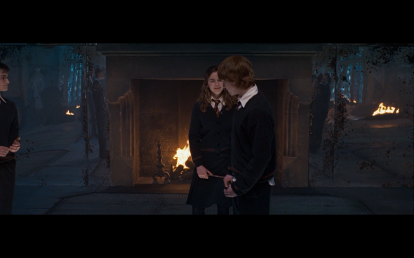Harry Potter and the Order of the Phoenix - 808