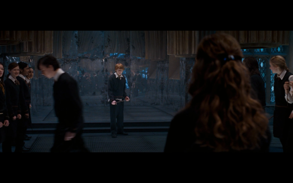 Harry Potter and the Order of the Phoenix - 813