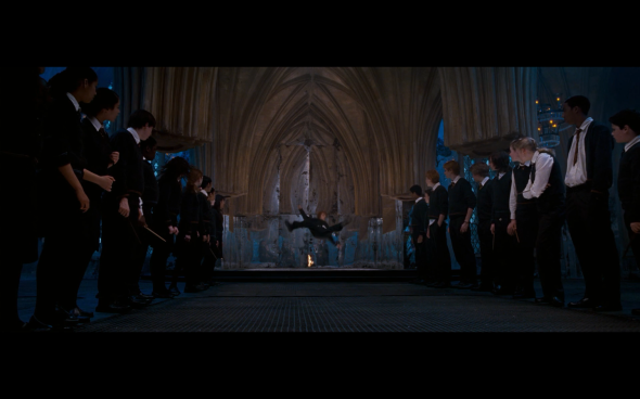 Harry Potter and the Order of the Phoenix - 824
