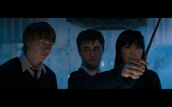 Harry Potter and the Order of the Phoenix - 842