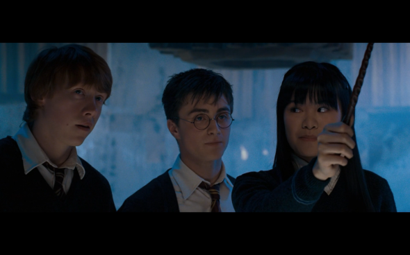 Harry Potter and the Order of the Phoenix - 846