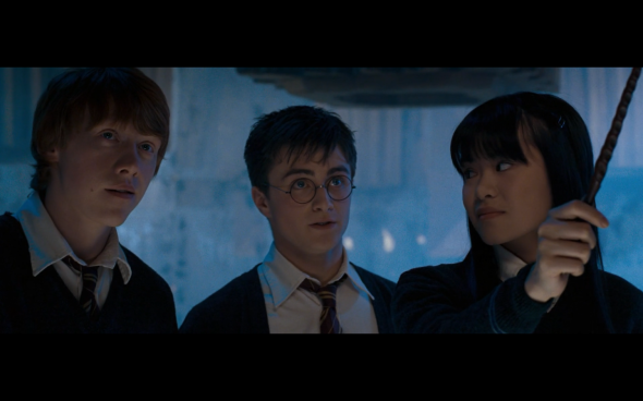 Harry Potter and the Order of the Phoenix - 847