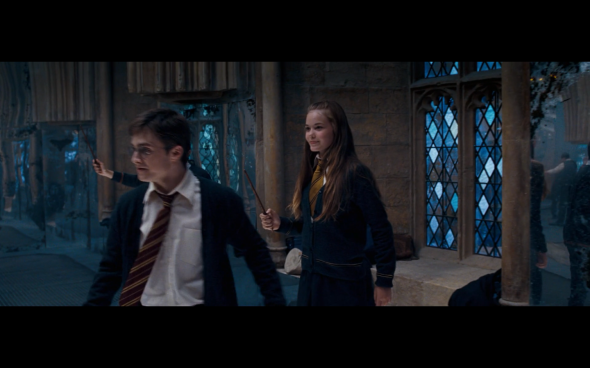 Harry Potter and the Order of the Phoenix - 871
