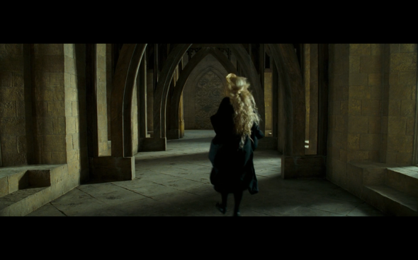 Harry Potter and the Order of the Phoenix - 873