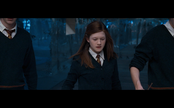 Harry Potter and the Order of the Phoenix - 897