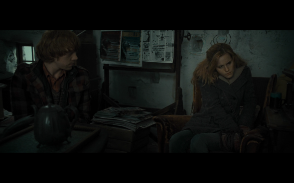 Harry Potter and the Deathly Hallows Part 1 - 1009