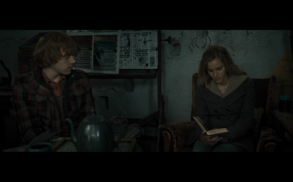Harry Potter and the Deathly Hallows Part 1 - 1010