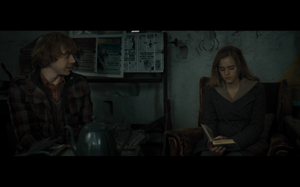 Harry Potter and the Deathly Hallows Part 1 - 1013
