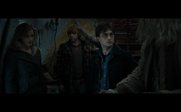 Harry Potter and the Deathly Hallows Part 1 - 1082