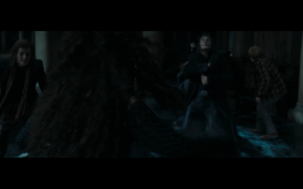 Harry Potter and the Deathly Hallows Part 1 - 1152c