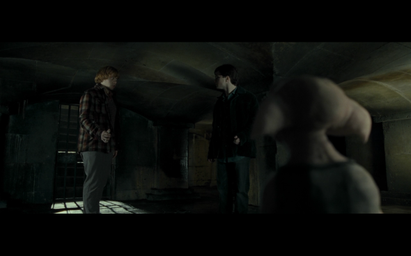 Harry Potter and the Deathly Hallows Part 1 - 1182