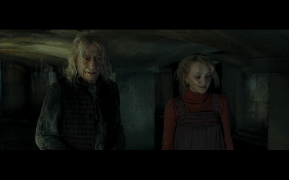Harry Potter and the Deathly Hallows Part 1 - 1183