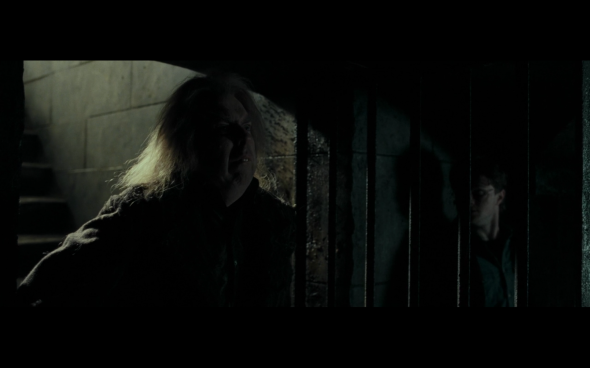 Harry Potter and the Deathly Hallows Part 1 - 1191