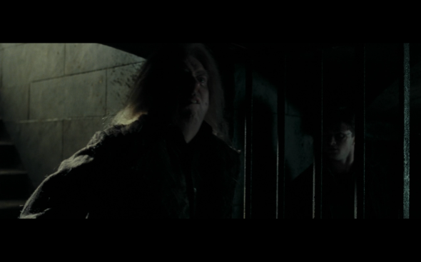 Harry Potter and the Deathly Hallows Part 1 - 1192
