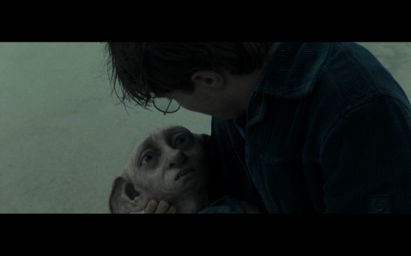 Harry Potter and the Deathly Hallows Part 1 - 1260