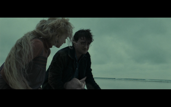 Harry Potter and the Deathly Hallows Part 1 - 1271