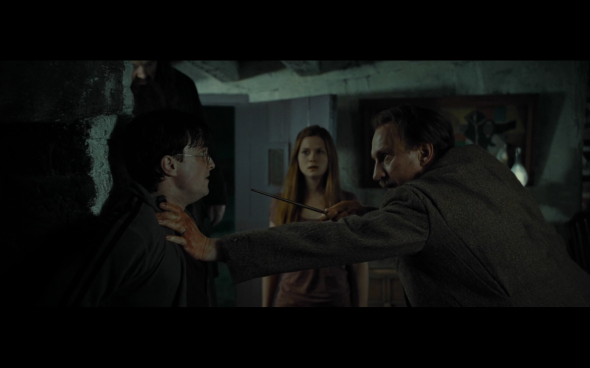 Harry Potter and the Deathly Hallows Part 1 - 251