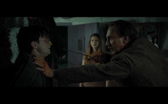 Harry Potter and the Deathly Hallows Part 1 - 252