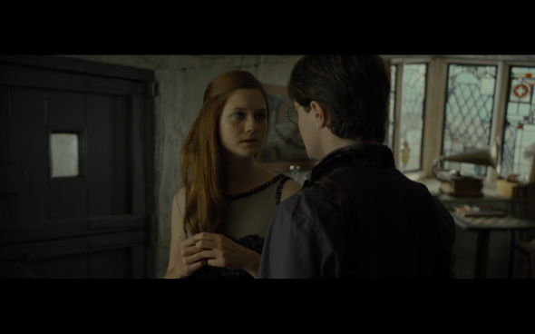 Harry Potter and the Deathly Hallows Part 1 - 312