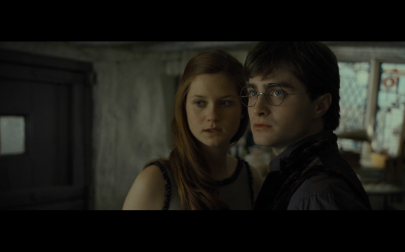 Harry Potter and the Deathly Hallows Part 1 - 317