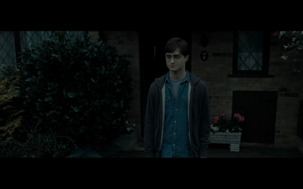 Harry Potter and the Deathly Hallows Part 1 - 32