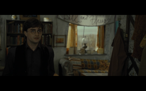 Harry Potter and the Deathly Hallows Part 1 - 320